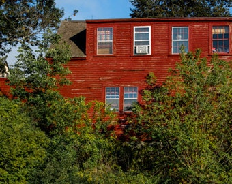 My Big Red House
