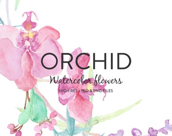Hand painted Pink Orchid Watercolor Flower Clipart