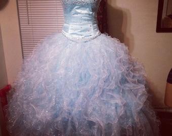 Cinderella Quince dress