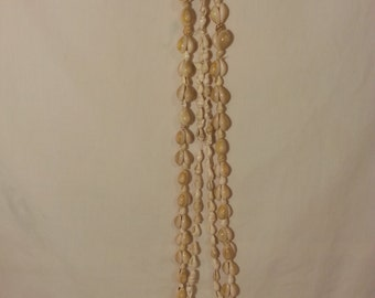 Shell Necklaces