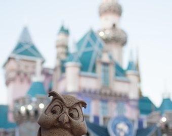 "Photography ""Keeper"", Disneyland, Castle, Girl Room, Pink, Wall Art, Home Decor, Owl, Statue, Magic"