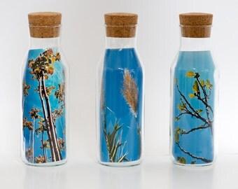 fine art photography bottles
