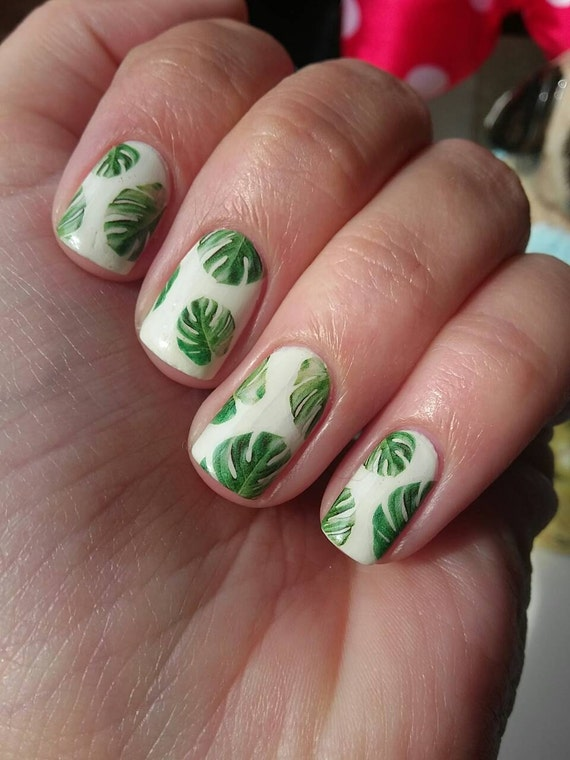 Monstera Deliciosa Nail Decals Cheese Plant Tropical