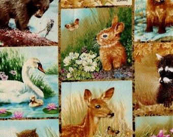 Wee Wildlife - 1 yd - by Giordano Studios -Four Seasons