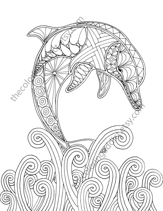 dolphin coloring page adult coloring sheet by