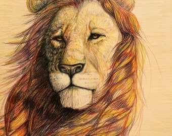 Colorful and majestic lion