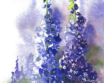 Print Of a Watercolour Of Two Delphiniums
