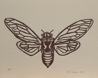 cicada letterpress print