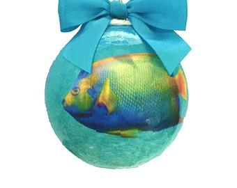 Exuma Cays  Bahamas Handmade Holiday Ornament-Land and Sea Park Queen Angelfish