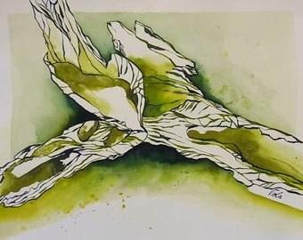 Drawing watercolor ink drawing original nature still life drawing bark