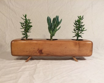The Trip-Mod ( Succulent Planter )