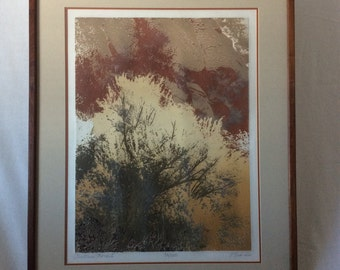 """Paula Crane Limited edition """"Picture Rock I"""" edition number 56/300"""