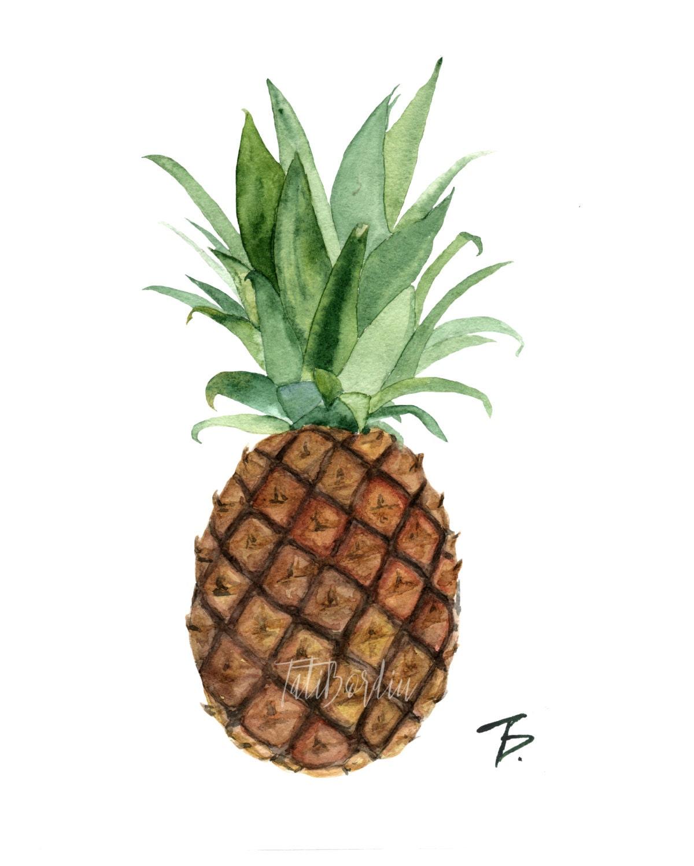 Watercolor Pineapple Clipart & Print from Tatibordiu on ...