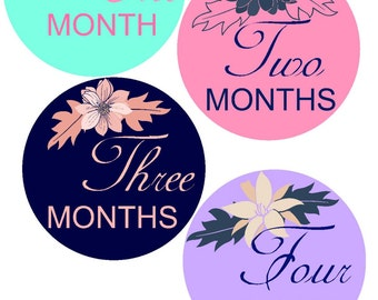 Baby Monthly Stickers Month Stickers Bodysuit Milestone Stickers Monthly Baby Stickers Photo Sticker Month by Month Baby Sticker Shower Gift