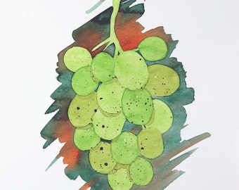 Original Watercolor Painting, Not Print, 9.4inches x 12.6inches, Grapes Green, 17062012031mSLTBGR