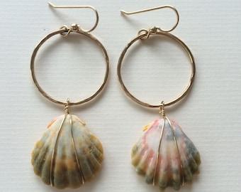 Full Circle Sunrise Shell Earrings