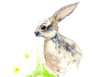 Rabbit 8x10 Print