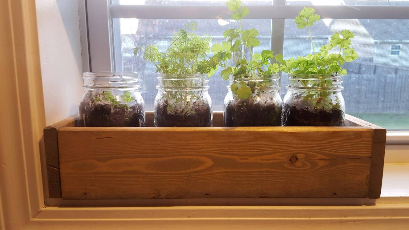 Window Planter Box Window Herb Garden Window Box By
