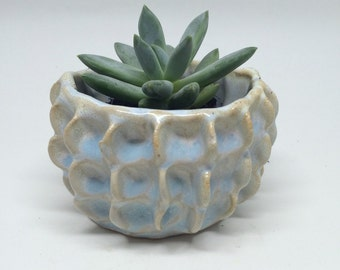 Light blue square planter, pinching, clay, gift, succulent, handmade, gift, desk decoration, table decoration