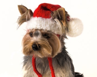 """Knitted hat for dog """"Santa"""", Christmas dog outfits, Santa dog, winter hats for dogs, Christmas hats for dogs, Hand knitted hat"""