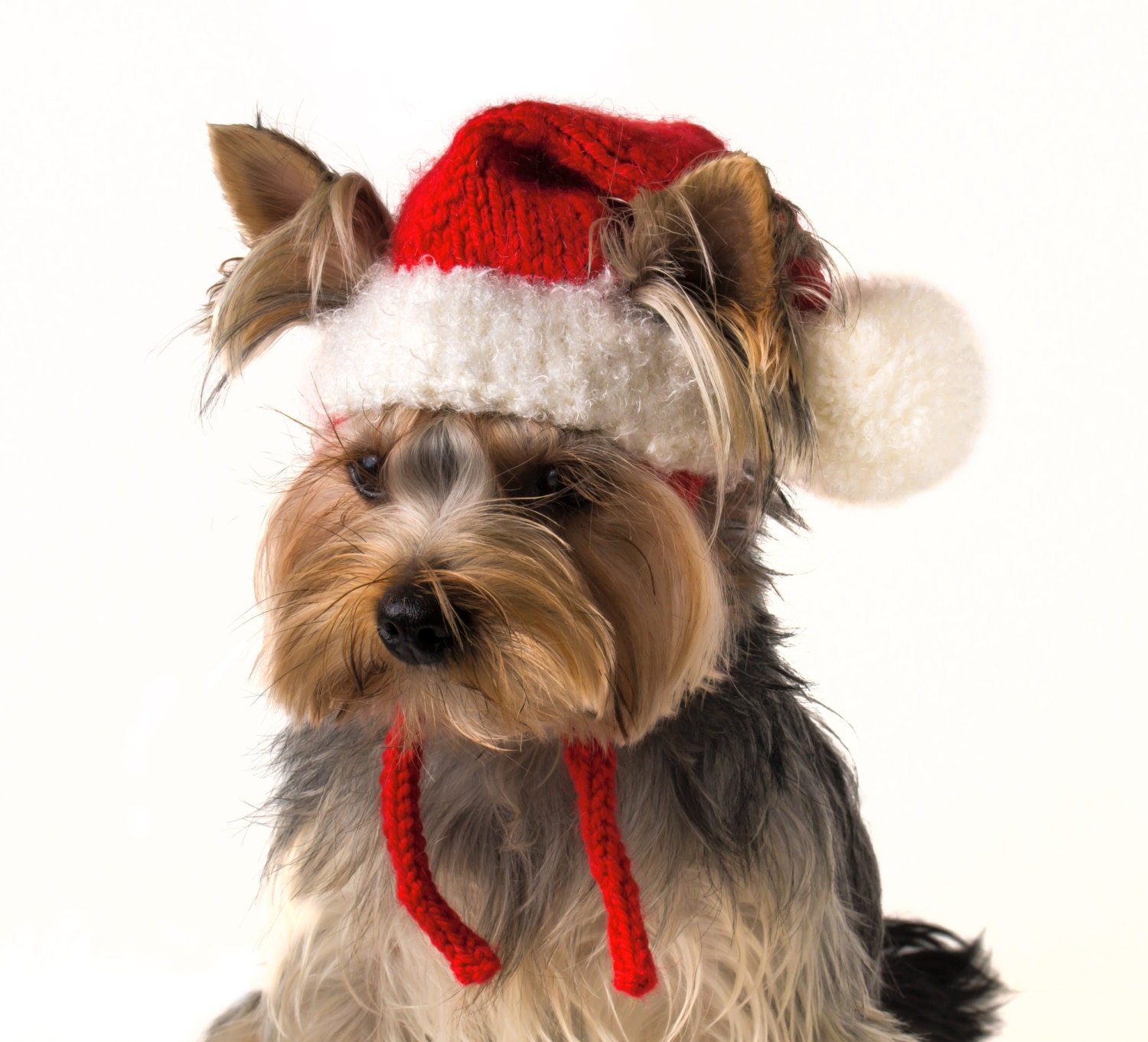 Knitted Hat For Dog Santa Christmas Dog Outfits