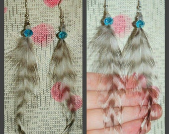 Barred Rock Rooster feather Earrings with glass bead