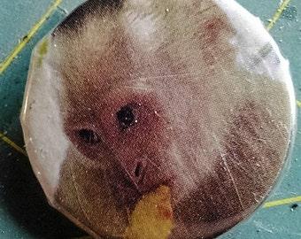 1 inch cute monkey pin