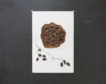 watercolor original painting | lotus