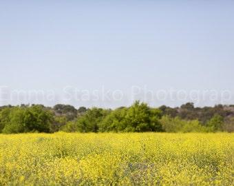 Spring Digital Background - Yellow
