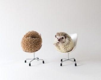 Friends - Hedgehog Greeting Card