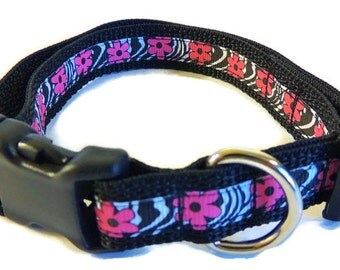 Medium Floral/Zebra Print Dog Collar