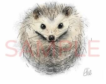 Hedgehog - A3 print