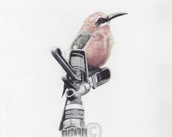 Bee Eater Bird Ballpoint Print