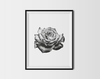 Stippled Botanical Rose A4 Dot Work Black and White Art Print