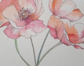 Poppy Botanical Painting