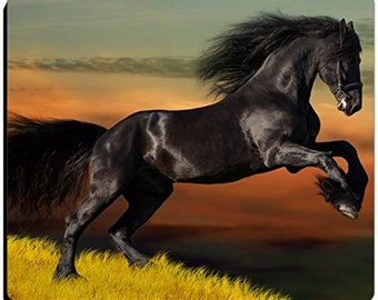 Black Beauty Horse with Scenic Background Mousepad