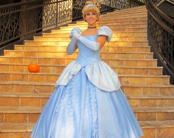Cinderella Adult Costume Cosplay Halloween