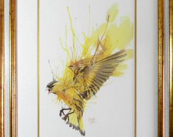 "Framed Prints ""Bird Decomposition"""