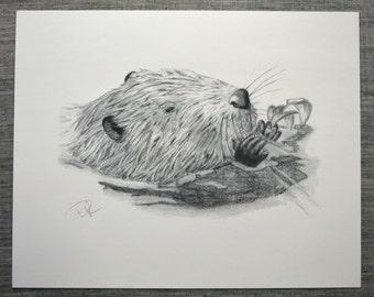 Graphite Pencil Art Print, Busy Beaver Art Print, Black and White Art, Illustration