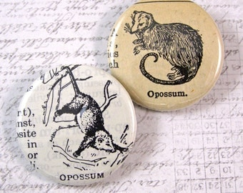 Opossum Pinback Button Set