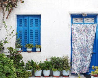 "Blue door print Greece travel photography blue white wall art  decor succulent plants  ""Blue Courtyard"""