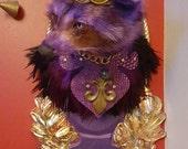 Purple Reign Raccoon
