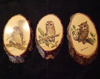 Owl Pictures/ Set of Three/ Decopauge on Wood
