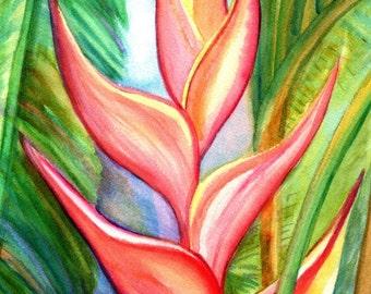 Pink Heliconia 5x7 art print from Kauai Hawaii hot pink orange exotic flower coral Tropical Flower Art Kauai Fine Art Hawaiian Wall Decor