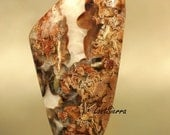 Jurassic Utah Yellow Cat  Petrified Limb Cast  Wood with Carnelian Agate & Barite Crystals Cabochon 30mmx68mmx6mm