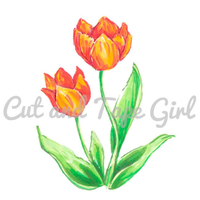 Basket Weaving Supplies Toronto : Flower clip art tulip clipart digital download spring