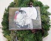 Animals 6 Pack Greeting Cards - Original Artwork - Supports Sanctuaries