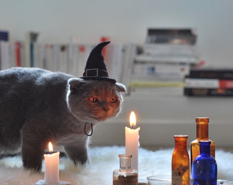 Cat Costume - Witch Hat - Hissy Witch - Cat Halloween Costume - Pet Halloween Costume - Cat Photo Prop