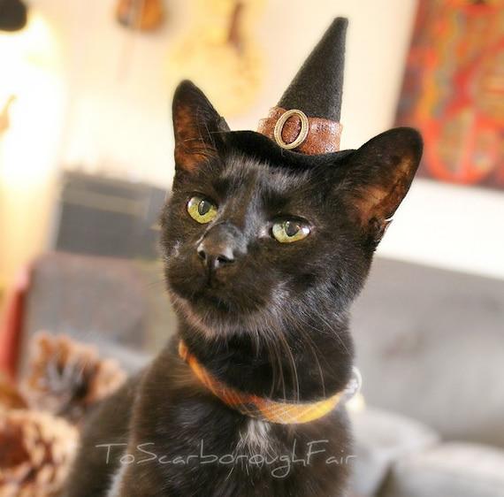 Cat Halloween Costume Cat Costume Witch Hat Pet Costume