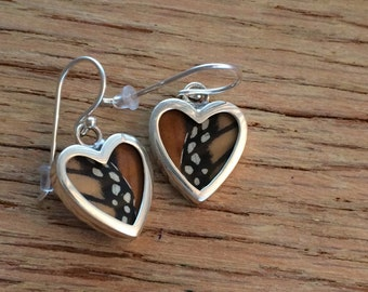 Real Monarch Butterfly Wing Earrings - Hearts, Black Orange & Sterling Silver.  LOVE Texas, Natural, earth friendly, tree hugger gift XMAS